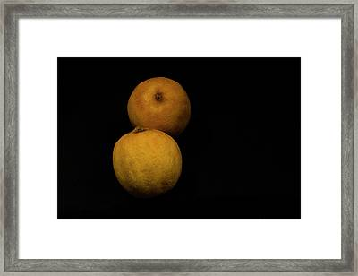 Citrus Framed Print by Stephane Loustalot