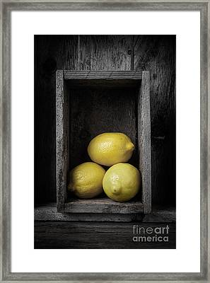 Lemons Still Life Framed Print by Edward Fielding