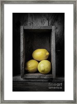 Lemons Still Life Framed Print by Edward Fielding