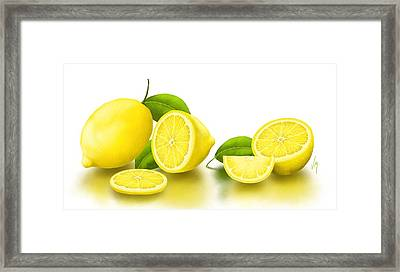 Lemons-white Framed Print by Veronica Minozzi
