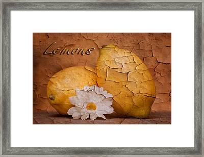 Lemons With Daisy Framed Print