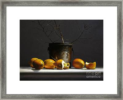 Lemons With Red Twig Dogwood Framed Print by Larry Preston