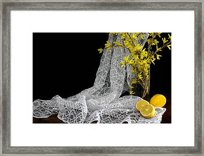 Lemons'n Lace Framed Print by Diana Angstadt