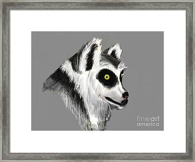 Lemur Framed Print by Alfredo Lozano