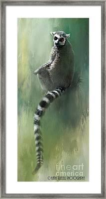 Lemur Catching Rays Framed Print