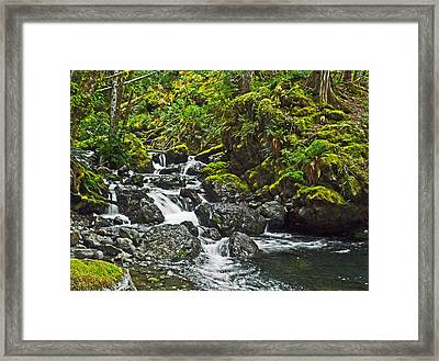Lena Creek Framed Print by Wilbur Young