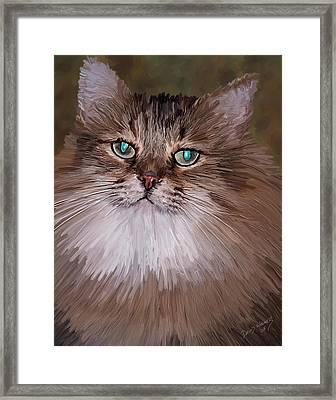 Leo Framed Print by David Wagner