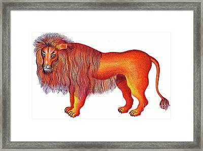 Leo The Lion Framed Print by Jane Tattersfield
