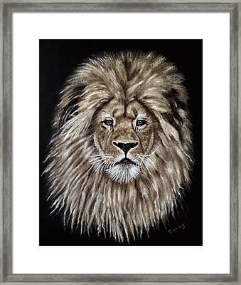 Leonardo Framed Print by Teresa Wing