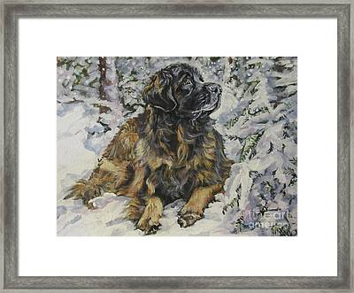 Leonberger In The Snow Framed Print