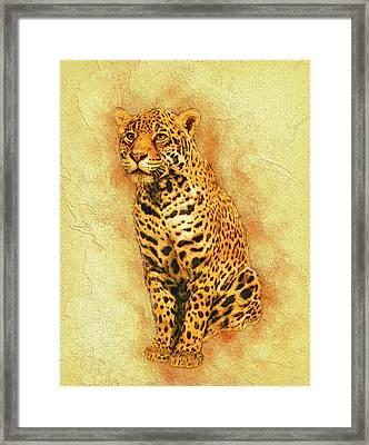 Leopard 4 Framed Print by Jack Zulli