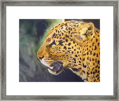 Leopard Framed Print by Crispin  Delgado