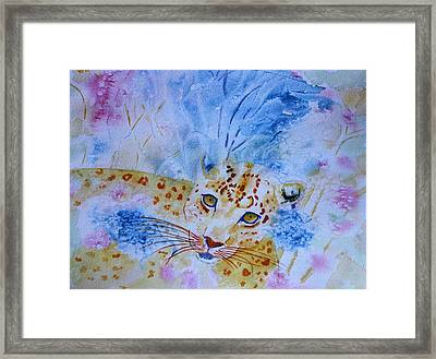 Leopard Hide And Seek Framed Print