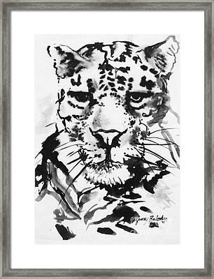 Leopard Framed Print by Jamey Balester