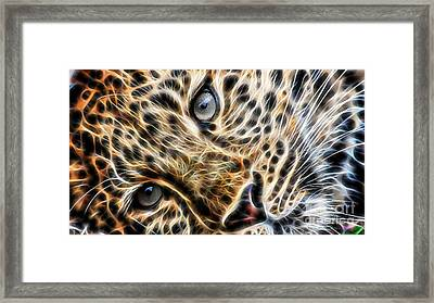 Leopard Framed Print by Marvin Blaine