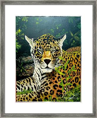 Leopard Framed Print by Peter Kulik
