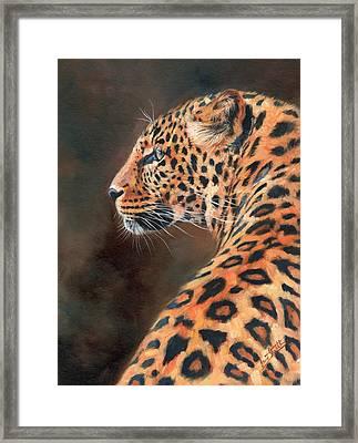 Leopard Profile Framed Print by David Stribbling