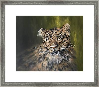 Leopard Relaxing Framed Print