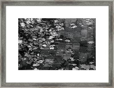 Les Feuilles Mortes Framed Print