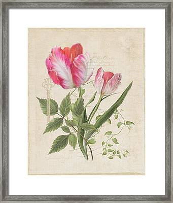 Les Fleurs Magnifiques Sur Parchemin - Parrot Tulips Vintage Style Framed Print