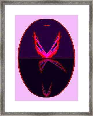 Les Oiseaux De Paradis Framed Print