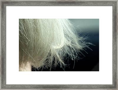 Leslie's Hair Framed Print by Terry Davis