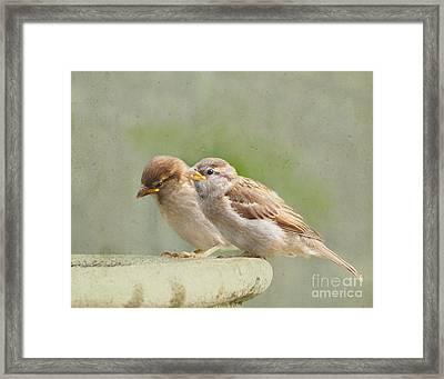 Lessons In The Garden Framed Print by Jan Piller