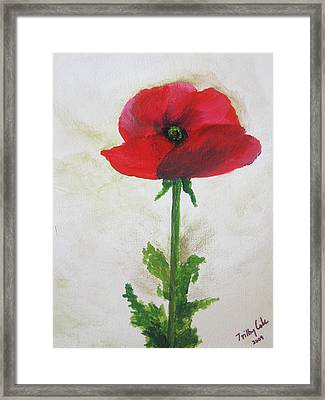 Lest We Forget Framed Print by Trilby Cole