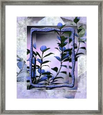 Let Free The Pain Framed Print by Vicki Ferrari