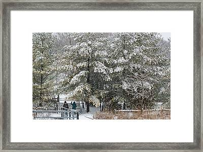 Let It Snow Framed Print by Charline Xia