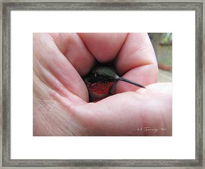 Framed Print featuring the photograph Comforting Hand by Maciek Froncisz
