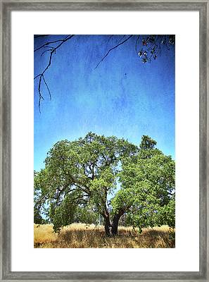 Let Me Love You Framed Print by Laurie Search