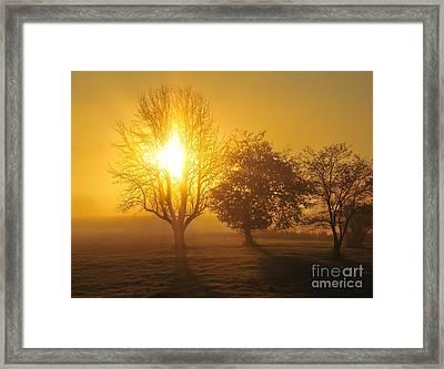 Let No One Bottle Up Your Light Framed Print by Terri Gostola