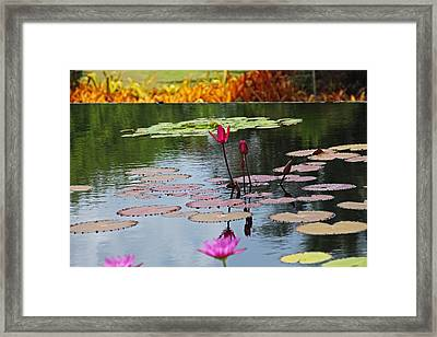 Framed Print featuring the photograph Let The Music Lift You by Michiale Schneider