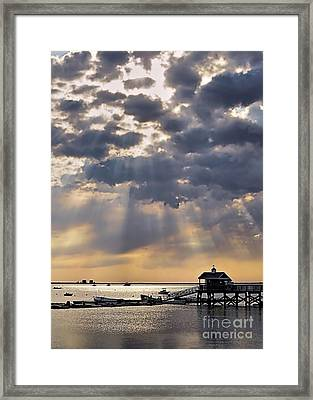Let The Sunshine In Framed Print by Janice Drew