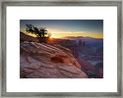 Framed Print featuring the photograph Let There Be Light by Dan Mihai
