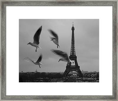 Framed Print featuring the photograph Let Your Spirit Fly  by Danica Radman