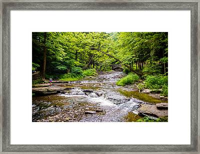 Letchworth Creek Framed Print