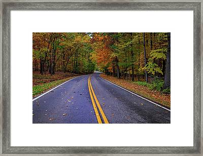 Letchworth Park Road Framed Print by Rick Berk