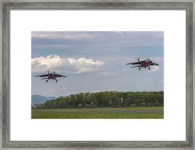 Lethal Pair Framed Print