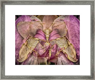 Lether Butterfly Or Not Framed Print