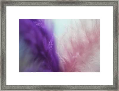 Lets Fly Together 4 Framed Print