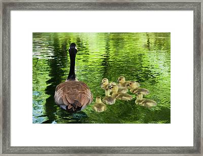 Let's Go Kids Framed Print by Donna Kennedy