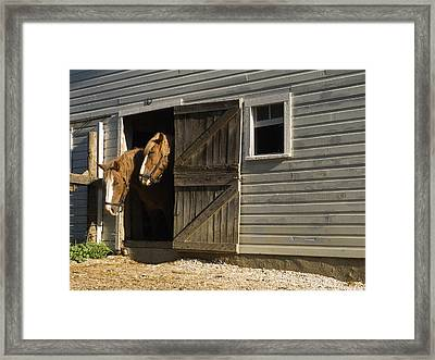 Let's Go Out Framed Print by Sally Weigand