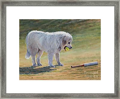 Let's Play Ball - Great Pyrenees Framed Print