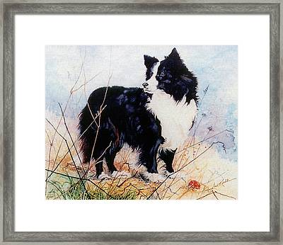 Let's Play Ball Framed Print by Hanne Lore Koehler