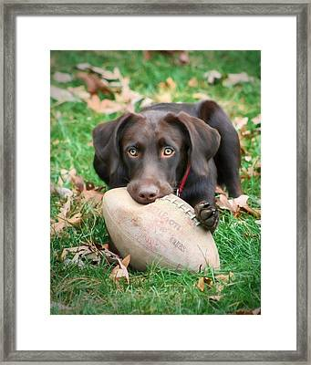 Let's Play Football Framed Print by Lori Deiter