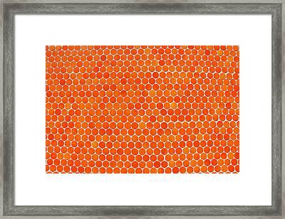 Let's Polka Dot Framed Print