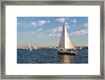 Lets Sail Framed Print by Tom Dowd