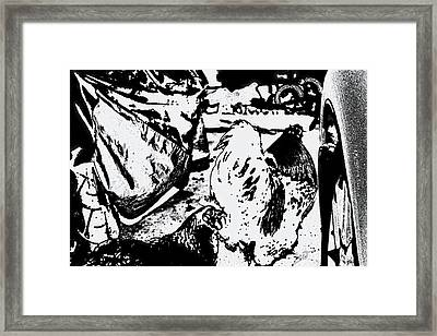 Let's Take The Mustang Framed Print by Gina O'Brien